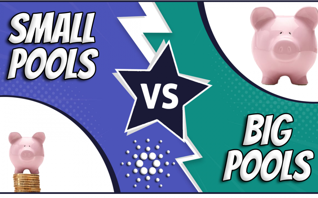 Small vs BIG Cardano Stake Pools